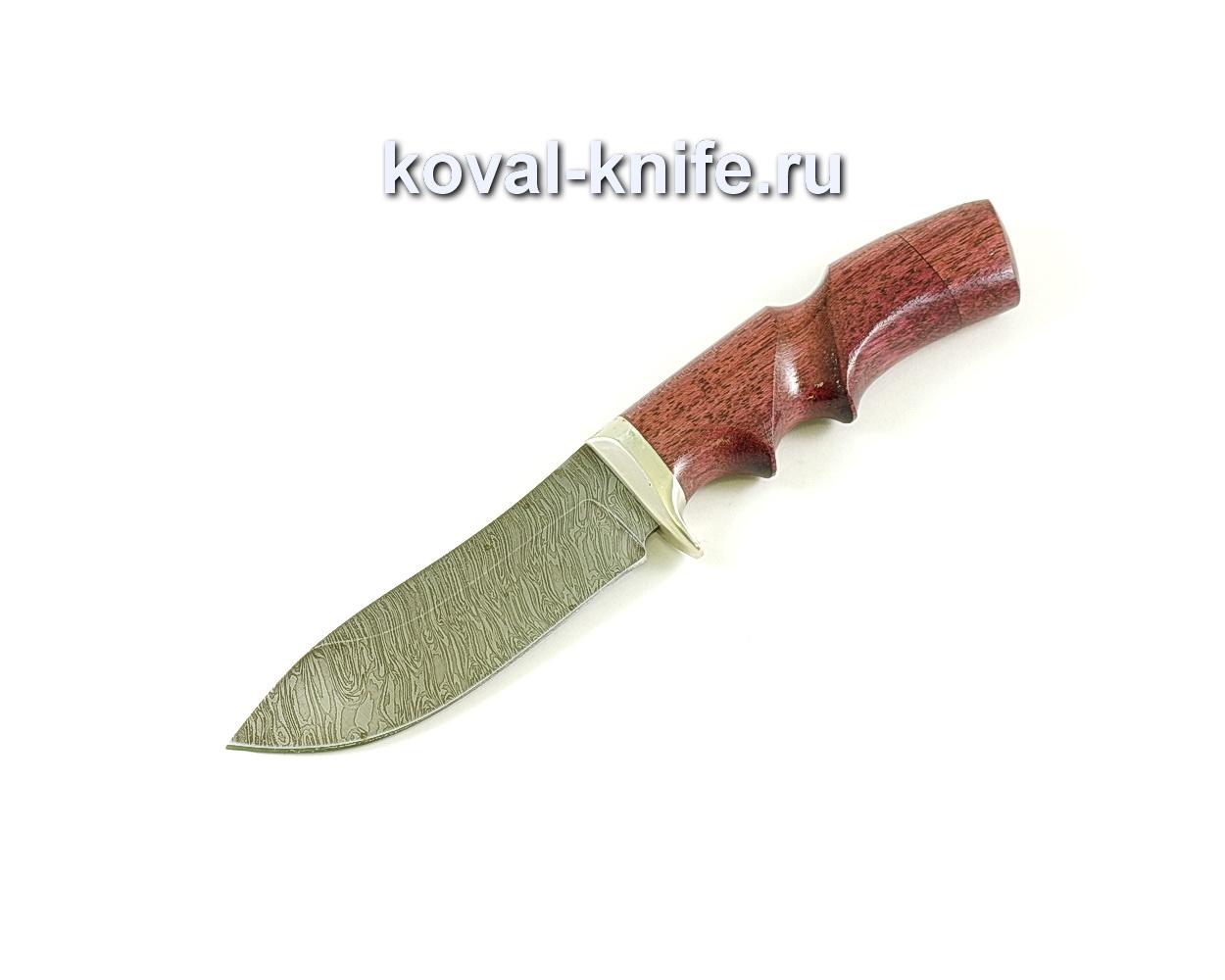 Нож Кабан (сталь дамасская), рукоять падук, литье A067