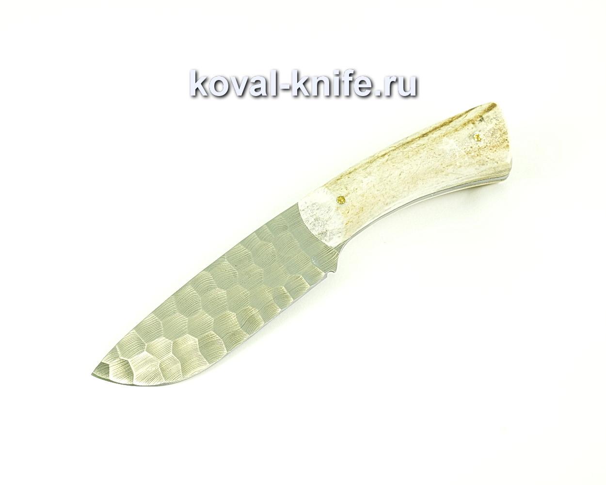 Нож Барс (сталь дамасская), рукоять рог лося A085