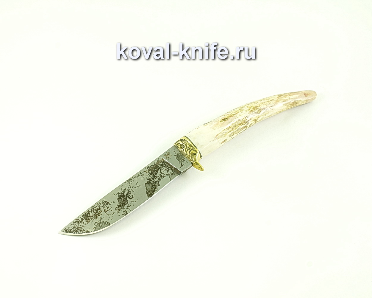 Нож Белка (сталь 95х18), рукоять рог, литье A270