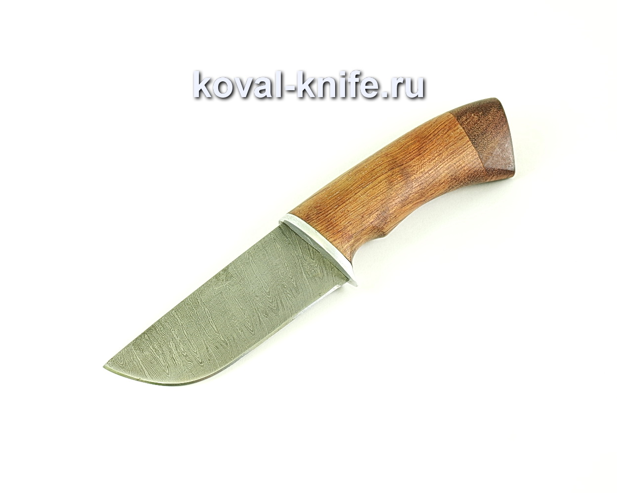 Нож Бобр (сталь дамасская), рукоять бубинга A086