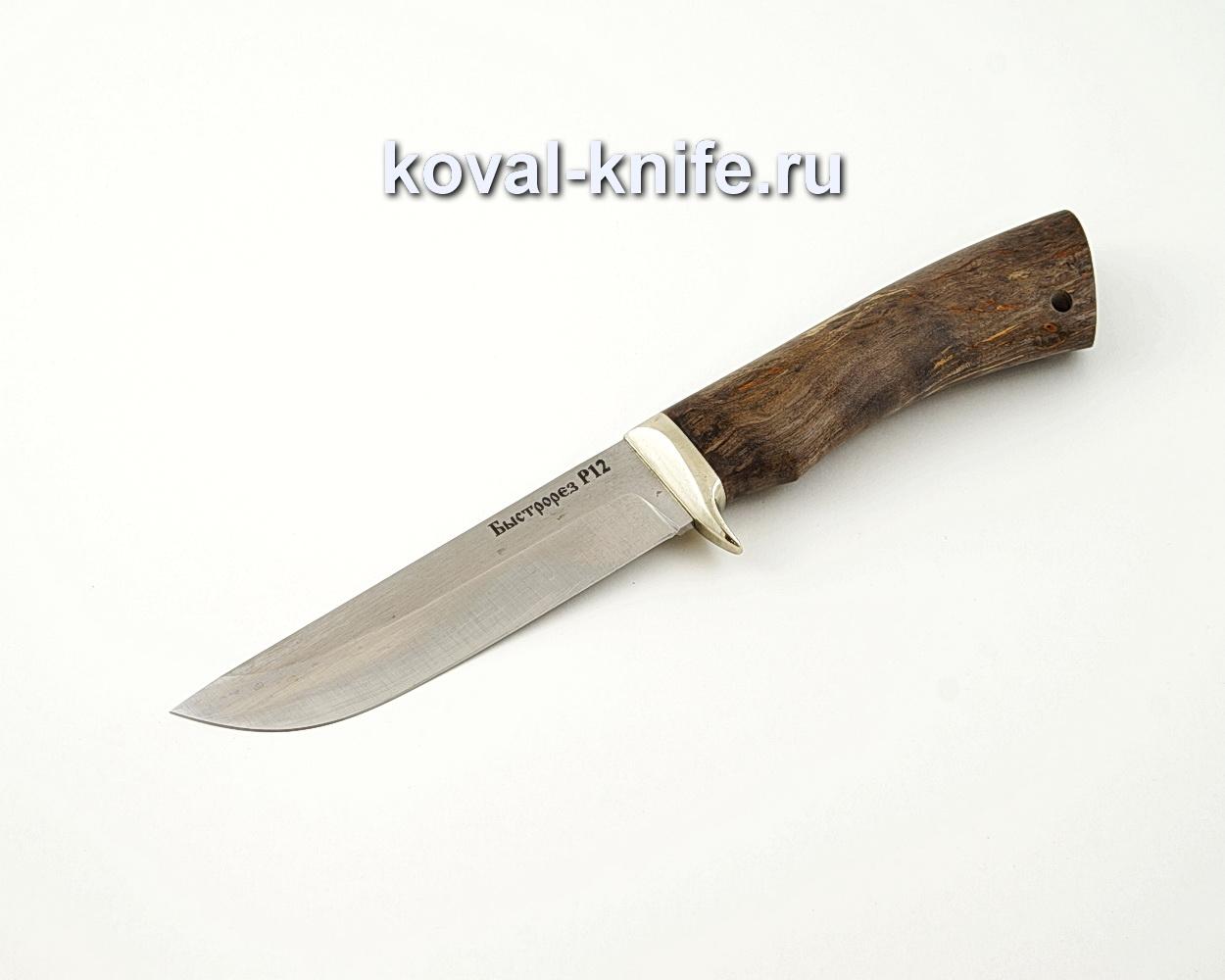 Нож Белка из быстрореза Р12М с рукоятью из стабилизированной карельской березы, гарда мельхиор A523